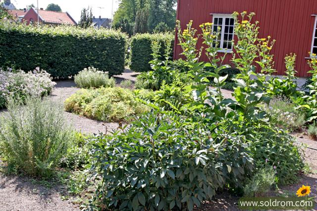 mansion_garden