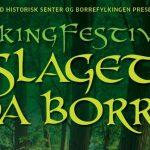 Viking festival 2013