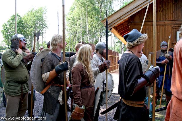 viking_slagetpaborre