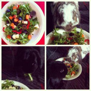 The birthday Salad is very popular!