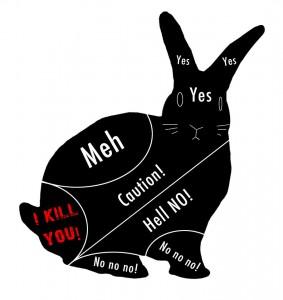 Petting a bunny (almost true)