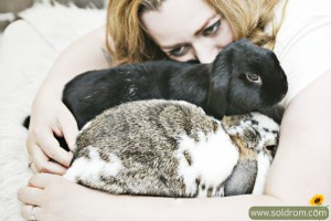 Love my bunnies