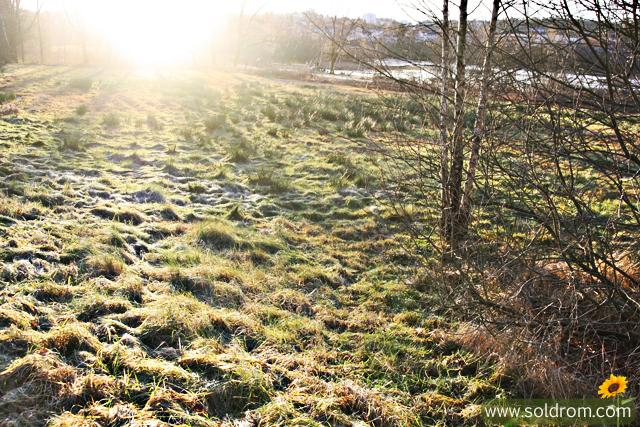 ostensjo_winter_13