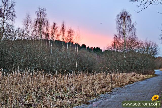 ostensjo_winter_4