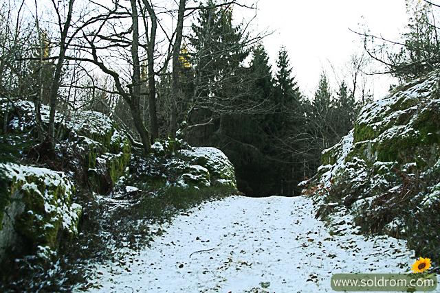 winter_wonderland_1