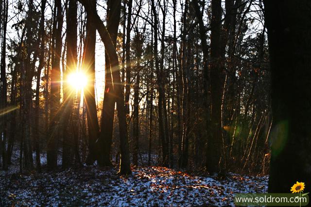 winter_wonderland_8