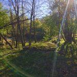 Sagdalen –The Golden Era of Sawmills