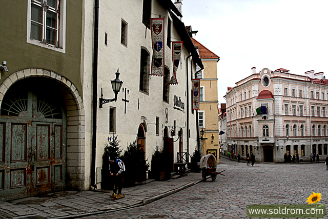 olde_hansa_tallinn_medieval_restaurant