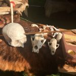 Nebbursvollen Viking Market -Meet your inner viking
