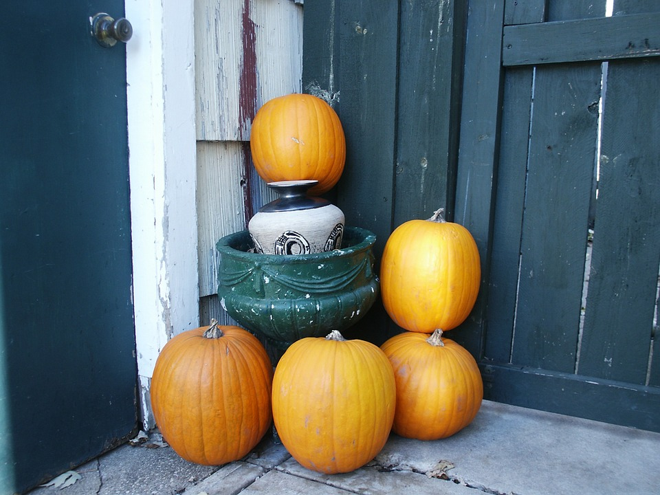 pumpkin halloween ideas