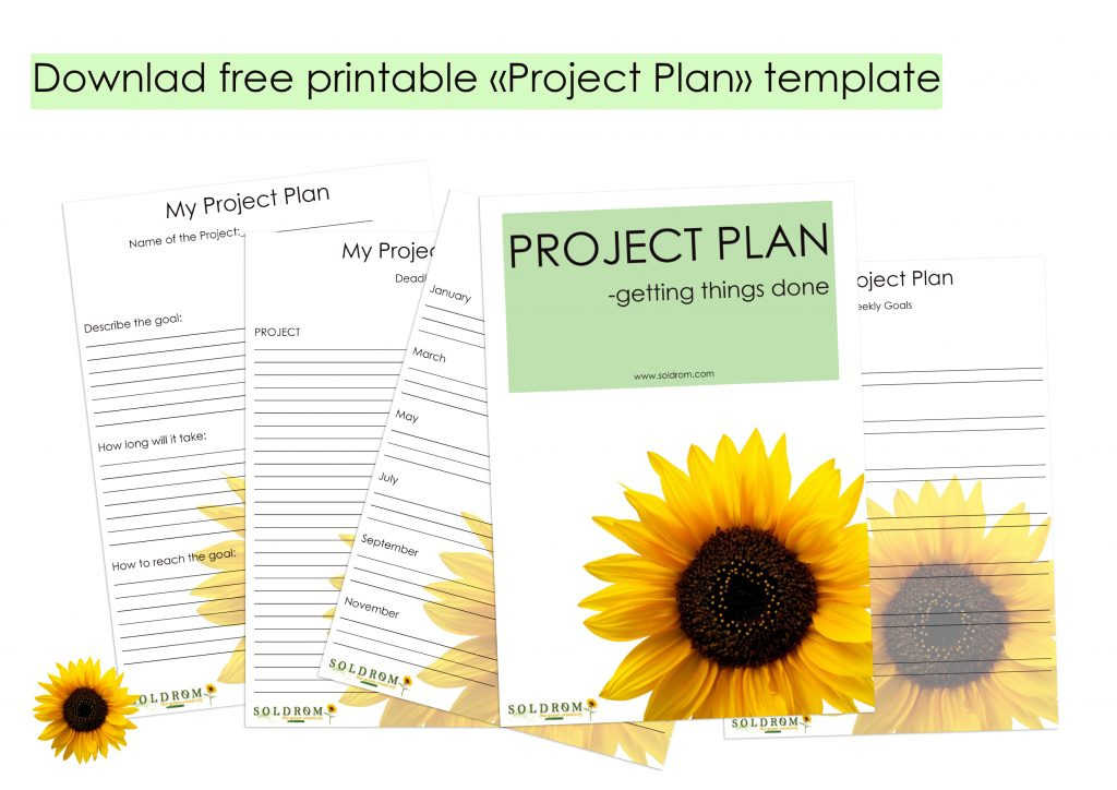 free project plan